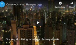 Consciousness-all-alive