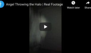 throwing-halo-realfootage