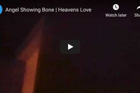 ANGEL-bone