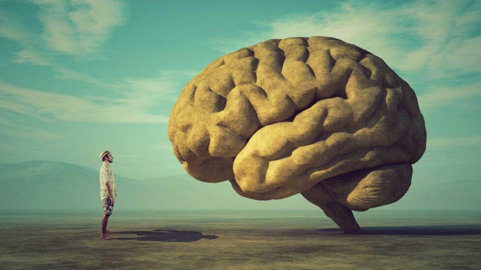 person-brain-1024x576